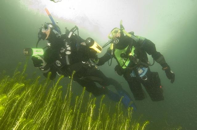 Nurkowanie Jezioro Tarnobrzeskie