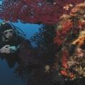 podwodne_02