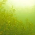 jezioro mojtyny 4
