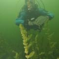 jezioro mojtyny p6