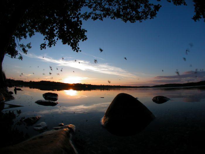 Wyprawy nurkowe - jezioro Hańcza