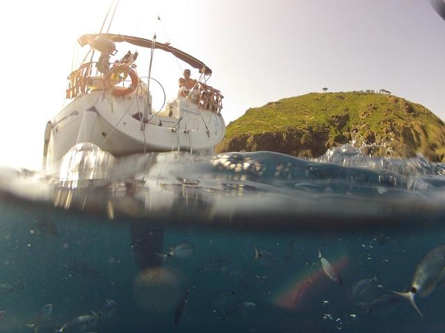 Wyprawy nurkowe - Elba