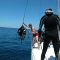 wyprawy-nurkowe-wyspy-toskanskie-24
