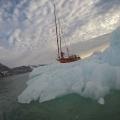 Arktyka_Spitsbergen_2017_49