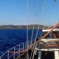 Elba i Capraia_1