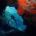 tremiti-islands-diving