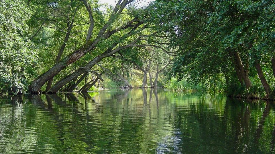 Nurkowanie Biebrza - spływ rzeką Biebrza