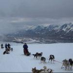 spitsbergen-nurkowanie-12