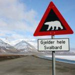 spitsbergen-nurkowanie-27