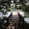 JezioroCiecz (10)