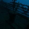 wyprawy-nurkowe-rosaliemoller-01
