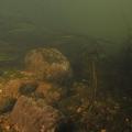 nurkowanie w rzece krutynia 2