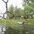 nurkowanie w rzece krutynia 22
