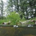 nurkowanie w rzece krutynia 25