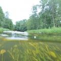 nurkowanie w rzece krutynia 26
