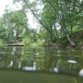 nurkowanie w rzece krutynia 5