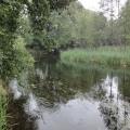 rzeka krutynia 3