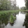 rzeka krutynia 6