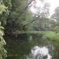 rzeka krutynia 7