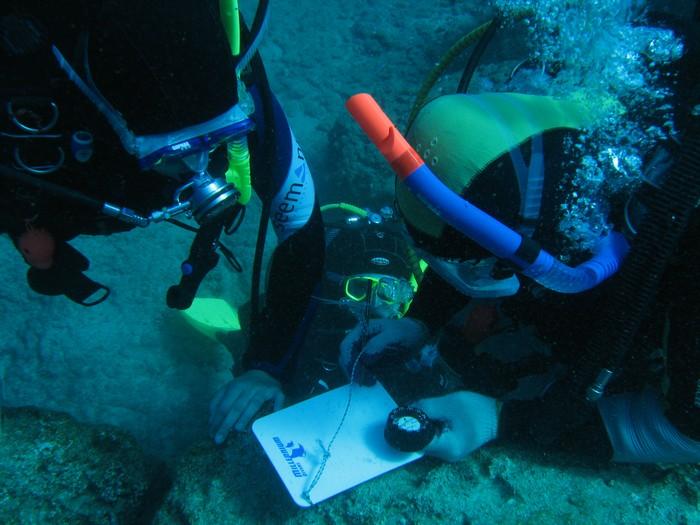 Nawigacja podwodna szkolenie