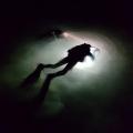 nurkowanie nocne