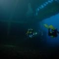 nurkowanie-wrakowe-03