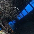 nurkowanie_wrakowe_08