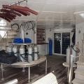 Egipt_lodz_safari_łódź Haeven Robin_06