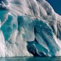 spitsbergen-nurkowanie-61