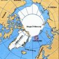 spitsbergen-nurkowanie-7