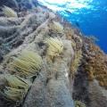 wyspy-eolskie_lipari_2020_19